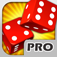 アトランティックシティクラップステーブル PRO - 病みつきギャンブラーのカジノテーブルサイコロゲーム